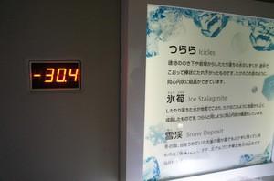 DSC04520.jpg