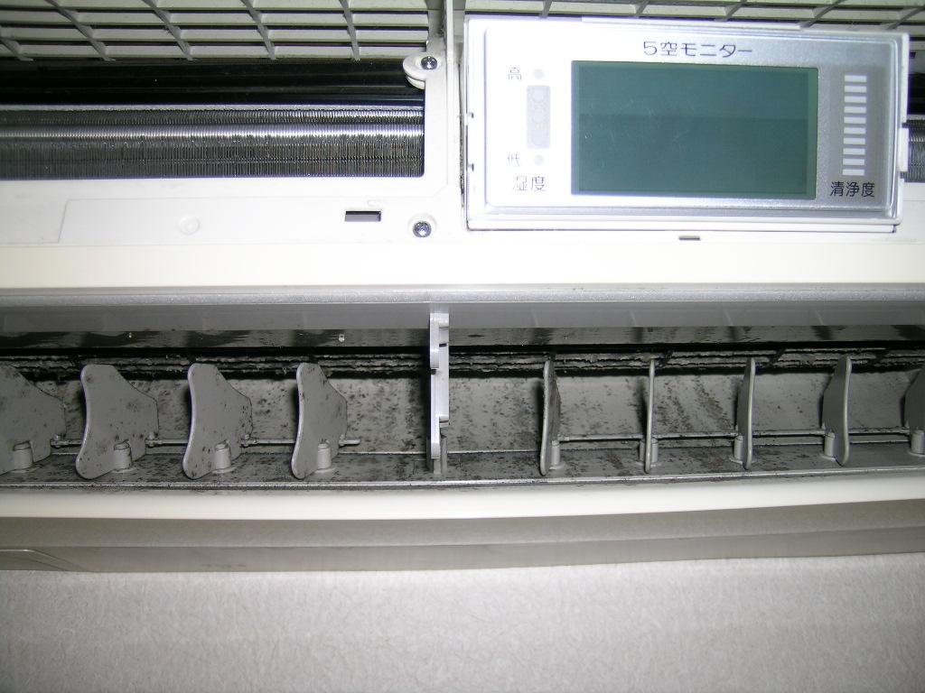 DSCN4448.JPG